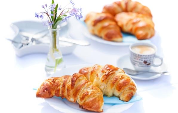 Picture flowers, coffee, Breakfast, cakes, cup, coffee, croissants, growing, breakfast