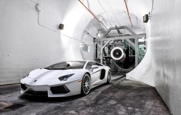 Picture white, light, reflection, white, lamborghini, front view, floodlight, aventador, lp700-4, Lamborghini, aventador