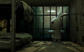 Wallpaper Rabbit, Camera, Prison