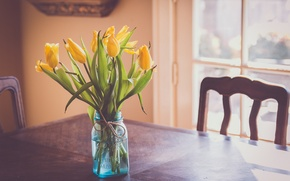 Picture flowers, table, yellow, tulips