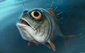 Picture eyes, water, fishing, fish, piranha, hooks