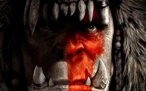 Picture cinema, fantasy, game, Warcraft, Blizzard, bear, rpg, movie, fang, clan, World of WarCraft, mmorpg, film, …
