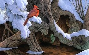 Wallpaper snow, winter, cardinal, painting, tree, Jerry Gadamus, bird, The Witness Tree