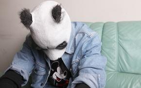 Picture music, mask, Panda, hip-hop, germany, panda, cro, Carlo Waibel