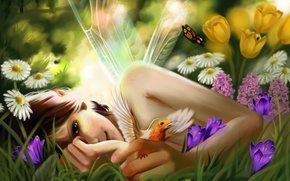 Picture summer, girl, flowers, bird, butterfly, fairy, by Ka-Wo
