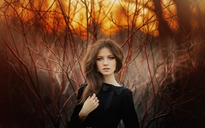 Picture forest, grass, look, sunset, sexy, pose, sweetheart, hair, Girl, figure, dress, brunette, girl, brown hair, ...