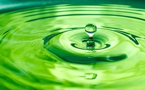 Picture water, circles, green, drop