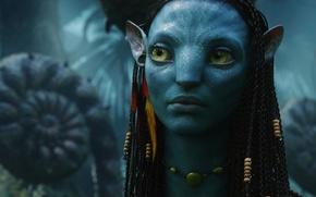 Picture Neytiri, Avatar, Na'vi