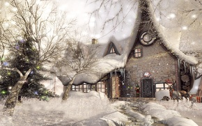 Picture snow, trees, house, deer