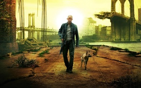 Wallpaper dogs, movies, different, men, I am legend
