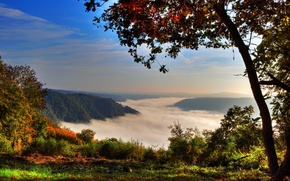 Picture forest, mountains, fog, Germany, Germany, tree., Klotten