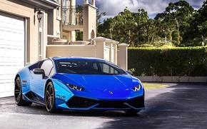 Picture Lamborghini, blue, Huracan, pur