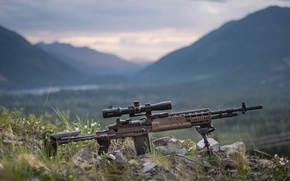 Picture Mk 14, rifle, weapons, automatic, Enhanced