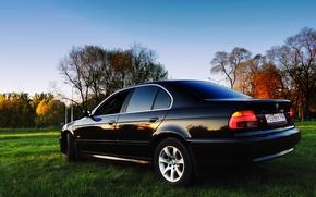 Picture BMW, Sedan, 5 series, Boomer, 525