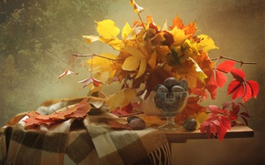 Picture autumn, leaves, yellow, still life, plum