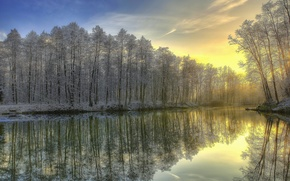 Picture winter, frost, forest, river, sunrise, morning