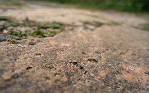 Picture Grass, Stone, Granite