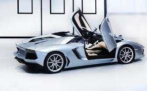 Picture supercar, Lamborghini, aventador, Lamborghini Aventador LP-700-4 Roadster