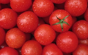 Picture drops, texture, vegetables, tomato, tomato