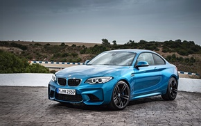 Picture track, BMW, track, Coupe, 2015