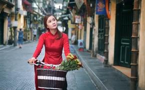 Picture girl, flowers, bike, face, street, basket, Asian