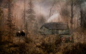 Picture nature, house, style, bears
