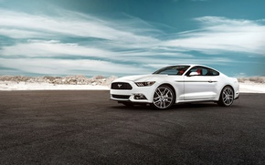 Picture Mustang, Ford, Muscle, Car, White, 2015, Oxford