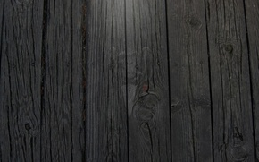 Picture 1920x1080, monkey, wallpaper, wood