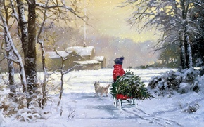 Picture winter, tree, child, dog