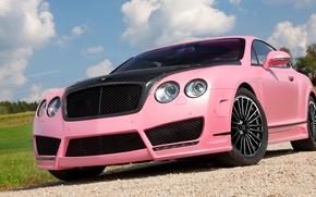 Picture pink, bentley, carbon