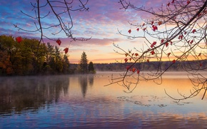 Picture autumn, forest, lake, sunrise, morning