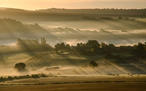 Picture field, the sky, trees, fog, hills, morning