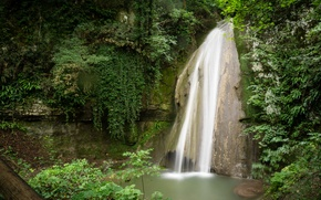 Picture greens, branches, rock, Park, foliage, waterfall, moss, Italy, The park of Waterfalls of Molina
