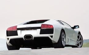 Wallpaper white, lights, Lamborghini, Murcielago