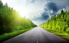 Picture road, forest, the sky, grass, asphalt, clouds, trees, clouds, nature