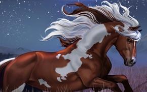 Picture stars, night, horse, hills, mustang, art, running, aomori