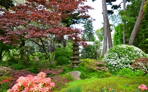 Picture trees, flowers, France, Paris, garden, the bushes, Japanese gardens, Albert-Kahn