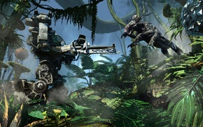 Picture forest, the game, attack, battle, avatar, avatar