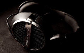 Picture headphones, music, music, sennheiser, headphones, HD448