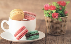 Picture coffee, colorful, cookies, dessert, flowers, cup, sweet, coffee, dessert, cookies, macaron, macaron, almond