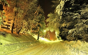 Picture winter, road, snow, trees, lights