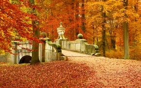 Picture autumn, forest, leaves, trees, landscape, bridge, nature