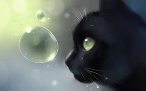 Wallpaper cat, cat, bubbles, black, head, art, profile, Apofiss