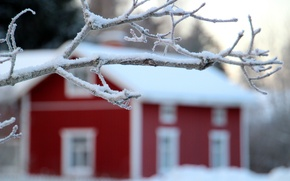 Picture winter, snow, landscape, nature, house, tree