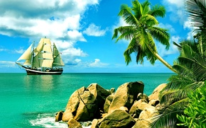 Picture palm trees, the ocean, shore, sailboat