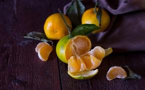 Picture orange, fruit, citrus, fruit, vitamins, juicy, Mandarin, tangerines