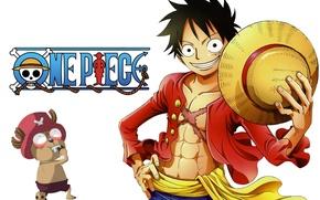 Picture sake, logo, game, Chopper, One Piece, pirate, anime, boy, flag, captain, asian, manga, reindeer, japanese, …