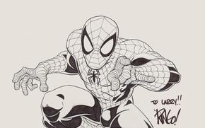 Picture Figure, Fiction, Marvel, Spider Man