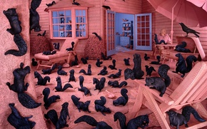 Wallpaper black and whites, all pink, phobias, Sandy Skoglund