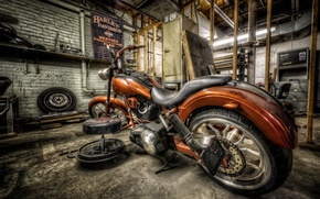 Picture Harley, bike, ride